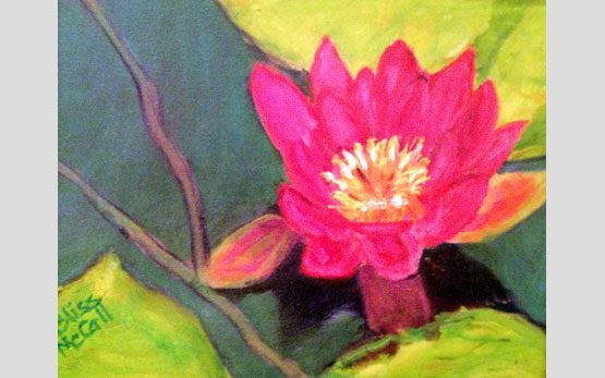 24_water_lily